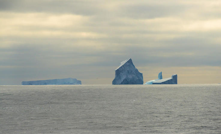 Das Südpolarmeer ist nicht eine leere Wasserwüste. Unter der Oberfläche treiben unzählige